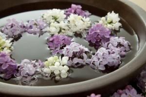agua flores moradas